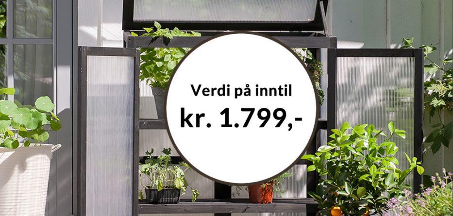 Få Minidrivhus Spirea sort som velkomstgave fra Bokklubben Nye Bøker